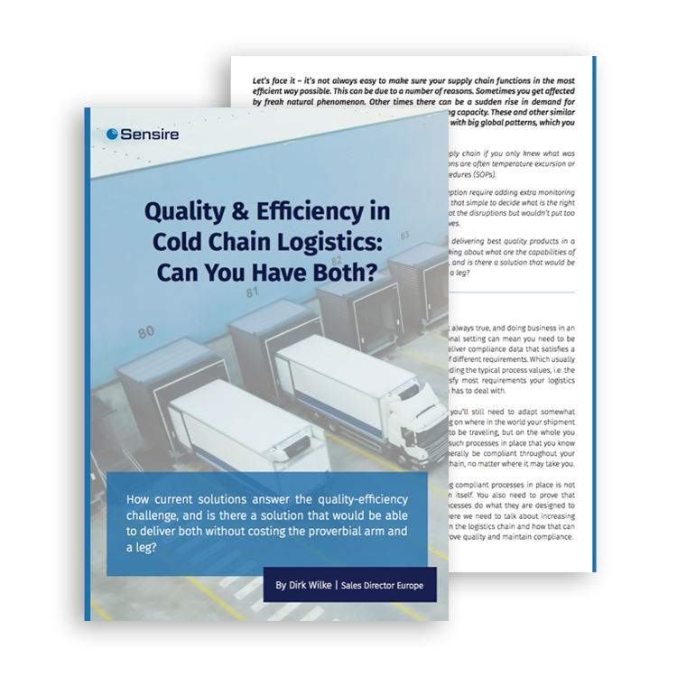 Quality & Efficienct in Cold Chain Logistics: Can You Have Both?